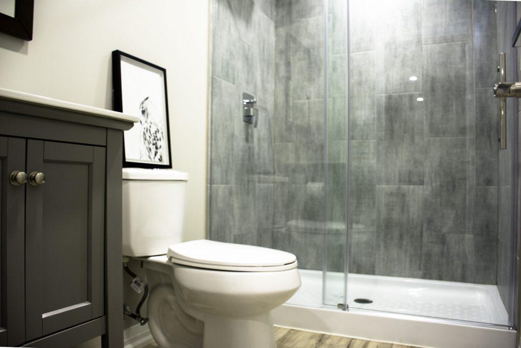 basement bathroom interior
