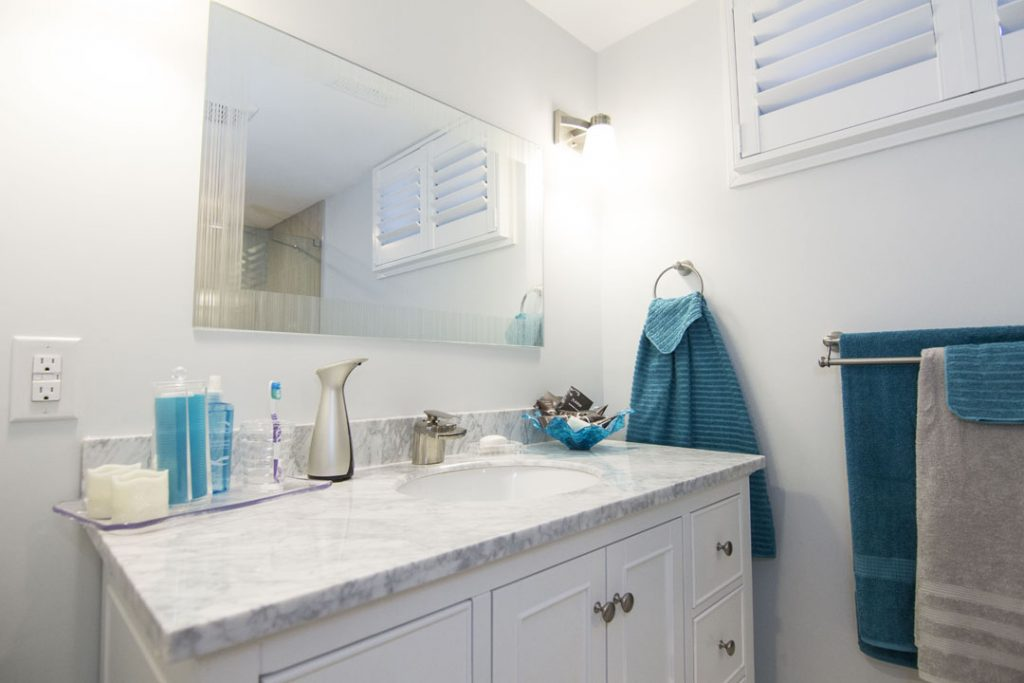 Small Bathroom Renovation in A Basement Etobicoke